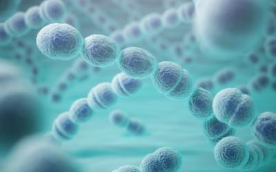 Exame permite avaliar resposta imunológica após aplicação da Vacina Pneumocócica Polissacarídica