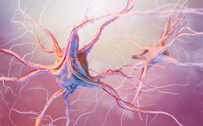 Estudo avalia a importância do Freelite® Mx [no líquor] para diagnóstico da Esclerose Múltipla