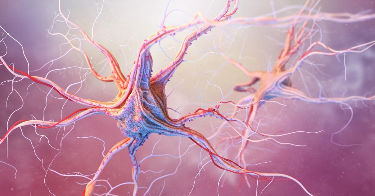 diagnostico-esclerose-multipla